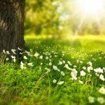 Does the Sun Help Acne